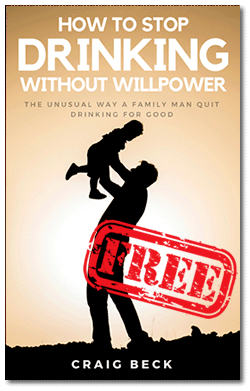 free how to stop drinking book