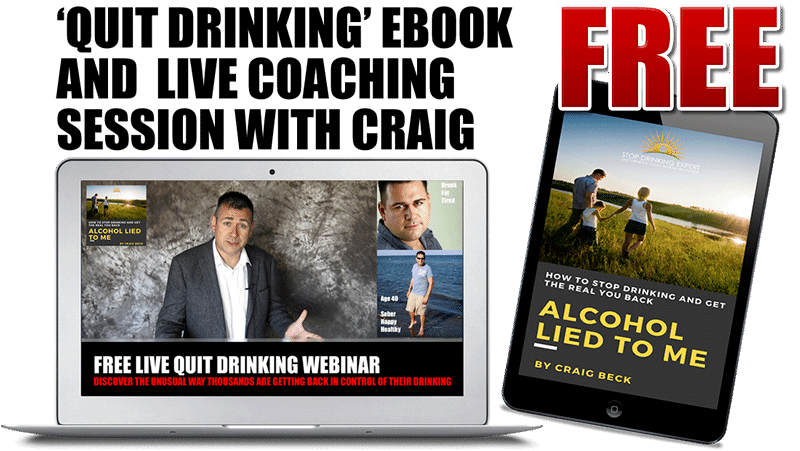 free quit drinking ebook 800